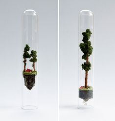 These whimsical miniature worlds were created by Rose de Jon and placed in tiny glass test tubes. Unconventional, right? Mini Mundo, Creem, Tiny World, Commercial Art, Dutch Artists, Cute Crafts, Creative Inspiration, Artsy Fartsy, Contemporary Art