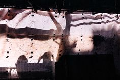 William Eggleston - Ancient & Modern