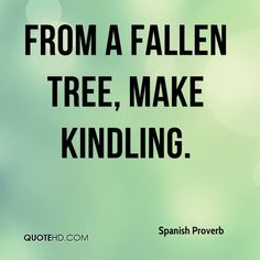 spanish proverb tree quote - Google Search