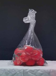 Tomatoes-in-Plastic-Bag-oil-on-canvas-24x18-by-Stella-Kim Dutch Golden Age, Walter White, Art Competitions, Water Lilies, The Conjuring, Oil On Canvas, The Help, To My Daughter, Im Not Perfect