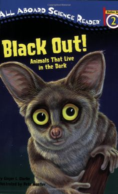 Fun book about noctural animals; about a 3rd grade reader. Prairie dogs, star-nosed moles, luna moths, and (of course!) bats are among the animals covered. Kids who like facts will enjoy this one.