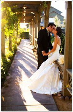 Ponte Winery Seasonal Wedding Photo Gallery   Seasonal Photo Gallery for Temecula Wine Country Weddings