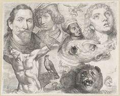 Michael Snijders | Studieblad met tekenvoorbeelden: koppen, torso en dieren, Michael Snijders, 1610 - 1672 | Twaalfde prent uit een serie met tekenvoorbeelden. Studieblad met linksboven een portret van Lucas van Leyden, naast een tweede portret van een man. Linksonder torso. Rechtsboven kop Maria Magdalena. Daarnaast een Morenkop. In het midden de kop van een grommende hond. Daaronder een brullende leeuw. Daaromheen dieren: een vliegende adelaar met schaap in de poten, een hop, een eekhoorn…