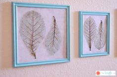 Color-Tinted Skeleton Leaves :: Hometalk http://www.hometalk.com/7392366/color-tinted-skeleton-leaves?utm_medium=facebook&utm_campaign=featured