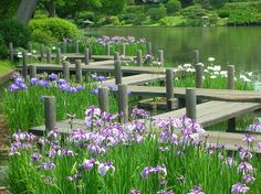St. Louis Botanical Gardens  Makes a great greeting card  Photography by Annie Stevens 다모아카지노 다모아카지노 다모아카지노 다모아카지노 다모아카지노 다모아카지노 다모아카지노 다모아카지노 다모아카지노 다모아카지노 다모아카지노 다모아카지노 다모아카지노 다모아카지노 다모아카지노 다모아카지노 다모아카지노 다모아카지노 다모아카지노 다모아카지노 다모아카지노