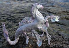 "OOAK Fantasy Equine Unicorn Hippocampus Sculpture ""Isochoric"" by Quequinox Art. $250.00, via Etsy."