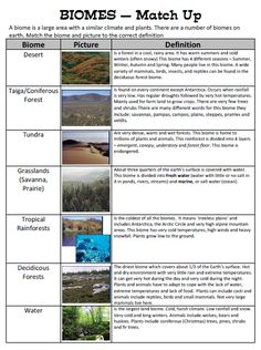 Biomes Match Up - Children match up a Biome, Picture of the Biome and Definition of that Biome - includes answer sheet!  Biomes include; - Desert - Tundra - Coniferous Forest (Taiga) - Grassland (Savannah / Prairie) - Tropical Rainforest - Deciduous Forest - Water