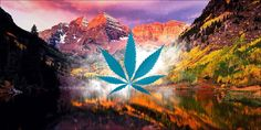 Law Of The Land: Recreational Cannabis In Colorado