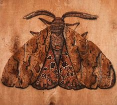 Scott Marr is a self taught pyography artist, 'Pyrography is the practice of burning an image onto a surface, using specially designed tools.  (i like the neutral design on wood)