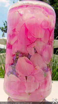 Eukas Rosen - Lavendellikör (Rezept mit Bild) von Eukalyptus2 | Chefkoch.de