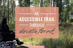 ACCESSIBLE SCOTTISH FOREST WALKS #ACCESSIBLE #DISABLED
