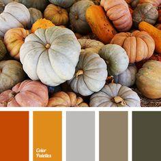 autumn color, autumn colors 2015, autumn palette, bright orange, color matching, color solution, gray, gray marsh, marsh, Orange Color Palettes, pumpkin, pumpkin color, shades of autumn, shades of brown.