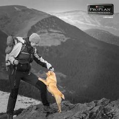 #Pinterest En cada victoria y cada meta alcanzada, él me acompaña.