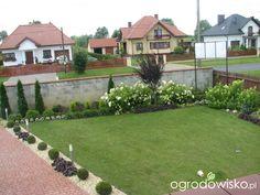Metamorfozy ogrodowe - strona 37 - Forum ogrodnicze - Ogrodowisko