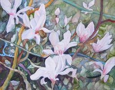 Magnolien Blüten als Frühlingsboten (c) Aquarell von Frank Koebsch | Mit mal drängeln sich alle … (c) Aquarell von Frank Koebsch