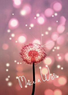 Make a Wish… … Happy Birthday! Make a Wish… More Happy. Best Birthday Quotes, Happy Birthday Messages, Happy Birthday Images, Happy Birthday Greetings, It's Your Birthday, Birthday Pictures, Happy Birthday Niece, Happy Birthday Beautiful Lady, Happy Birthday Wallpaper