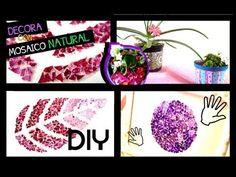 DIY ✄ DECORA TU ESPACIO CON CASCARAS DE HUEVO - MOSAICO - VARIAS IDEAS△ Litta´s World