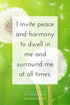 Positive affirmation for more peace + harmony.