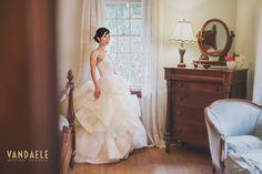 Historic Properties, Wedding Dresses, Fashion, Bride Dresses, Moda, Bridal Wedding Dresses, Fashion Styles, Weeding Dresses, Weding Dresses
