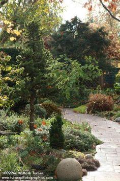 Curving paved path through conifer & perennial garden, autumn. Marietta & Ernie OByrne, Eugene, OR. © Mark Turner