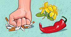 6 Φυσικές Θεραπείες Για Να Κόψετε Το Κάπνισμα Το κάπνισμα είναι μια συνήθεια που σε σκοτώνει αργά, από μέσα προς τα έξω. Μόλις το ξεκινήσετε, η Health And Beauty, Hair Beauty, Disney Characters, Cute Hair