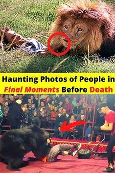Haunting Photos of People in Final Moments Before Death - So Funny Epic Fails Pictures North Tower, Shampoo For Thinning Hair, Haunting Photos, Natural Preservatives, Epic Fail Pictures, Best Shampoos, Level Up, New Pins, Funny Comics