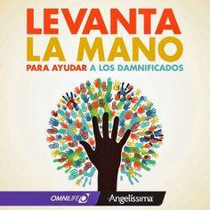 Google+La #GentequeCuidaalaGente ayuda. Dona víveres en los Centros de Distribución #Omnilife de México. #AyudaDamnificados #Ingrid #Manuel