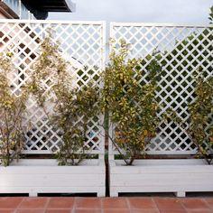 grigliati legno terrazzo - Cerca con Google   Garden   Pinterest ...