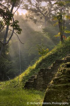 Ruins (Guatemala) 'Tikal - This regional superstar is well on the tourist trail but totally worth the visit for its soaring, jungle-shrouded temples. Tikal, Mayan Ruins, Ancient Ruins, Countries In Central America, South America, Latin America, Wanderlust, Places To See, Travel Inspiration