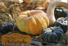 Win a Samsung Galaxy Camera! The 2013 The Best of Fall Photography Contest - you do NOT have to be an expert photographer for this - it's all via Instagram. #VZWBuzz GOOD LUCK! Ends 11/01/13