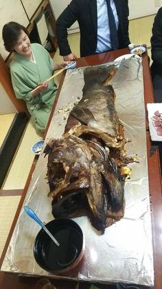 唐津くんちに行きました。くんち料理のあらの煮付けです。35kgのあらを三日間煮ます。