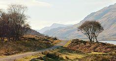 Craignure Inn Isle of Mull.  Fantastic place.  Beside Loch Spelve. © Andrew Oldacre