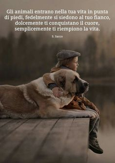 Dog Phrases, Dog Friends, Best Friends, Animals And Pets, Funny Animals, Human Emotions, Animal Wallpaper, Animal Quotes, I Love Dogs