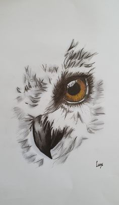 Ox Tattoo, Tattoos, Pencil Sketches Of Animals, Owl Tattoo Drawings, Tattoo Designs, Cameo, Owl Art, Owls, Watercolour