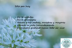Principios del Reiki Reiki, Salud Natural, Herbs, Mother Nature, Herb, Spice