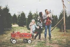 Posh Poses | Family | Christmas Tree Hunting | Winter Inspiration | Family of 4 | Wagons & Flannel