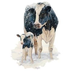 First Christmas by Bonnie Mohr Farm Animals Cows Holstein Country Art Print Wall Décor Framed Picture Farm Animals, Animals And Pets, Cute Animals, Beautiful Creatures, Animals Beautiful, Cow Art, Tier Fotos, Belle Photo, Cattle