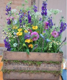 Flower Bed Plants, Flower Beds, Flower Tower, Small Garden Design, Flower  Farm