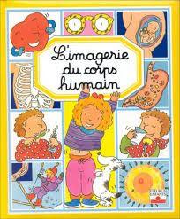 Résultats de recherche d'images pour « l'imagerie du corps humain »