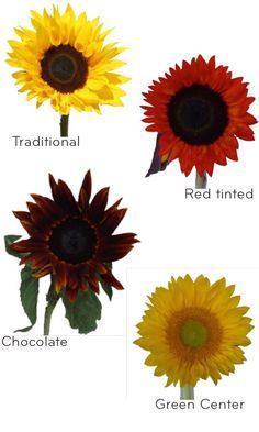 Sunflower Wedding Decorations | Sunflower wedding ideas, wholesale wedding flowers from Fiftyflowers ...