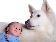 Tu bebé y tu perro: un vínculo de amor y bienestar. www.farmaciafrancesa.com/main.asp?Familia=189&Subfamilia=220&cerca=familia&pag=1