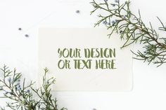 White Card with Juniper Branches #2 by ILoveMockupDesign on @creativemarket