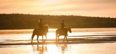 Horseback riding along the river Ounasjoki under the Midnight Sun -Rovaniemi, Lapland, Finland