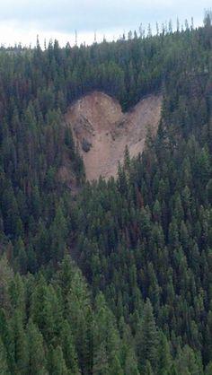 Hearts in nature Flint Creek pass just passed Georgetown lake, Montana