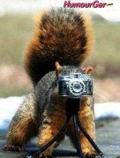 Le plus petit appareil photo au monde