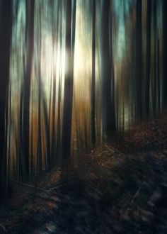 Digital art selected for the Daily Inspiration #1964