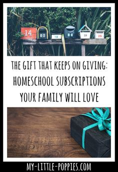 The Gift that Keeps on Giving: Educational Monthly Subscriptions Your Family Will Love  Enrich your family live and homeschool with these fantastic monthly subscriptions! They would make the perfect gift this holiday season.