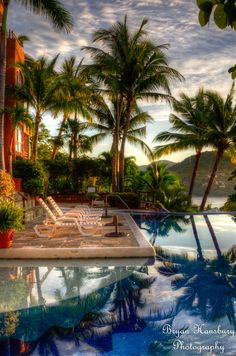 Morning in Zihuatanejo, Mexico - I'm a giant fan of palmtrees, been part of my life the last 2 and a half years in australia. Love them