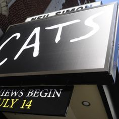 Why Everyone Should See This Revival of Cats | Playbill