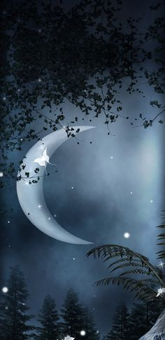 Virgo And Taurus, Virgo Zodiac, Wallpaper Backgrounds, Moon, Celestial, Space, Outdoor, Display, Outdoors